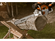 MS 291 Chainsaw
